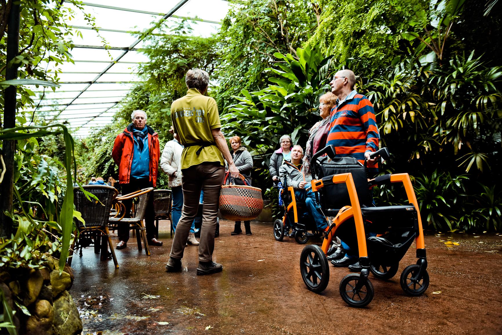 Sortie en fauteuil roulant ou déambulateur